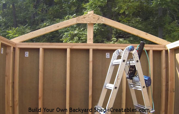 How To Build A Shed: Build The Shed Roof